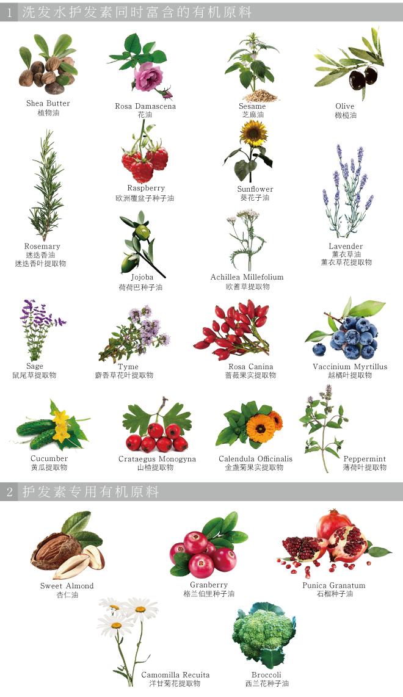 植物提取成分