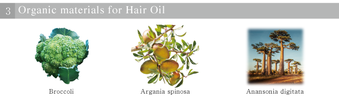 Organic materials for Hair Oil
