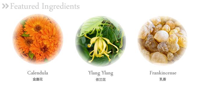 面霜的植物提取成分