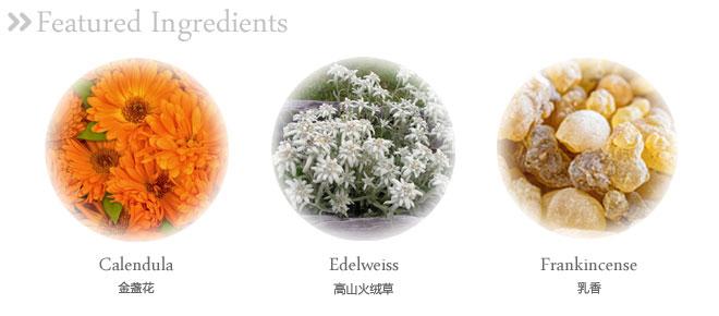 乳液的植物提取成分